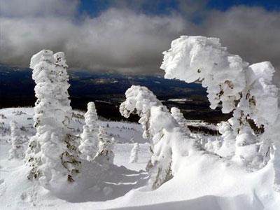 Skiing at Big White